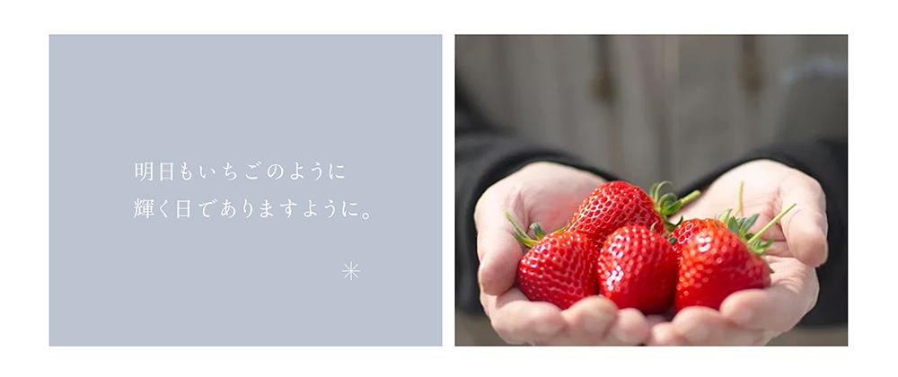 新潟県新発田市のいちご越後姫生産農家・加工・直売所 Ichi-Rinのホームページ制作のスクリーンショット「明日もいちごのように輝く日でありますように。」